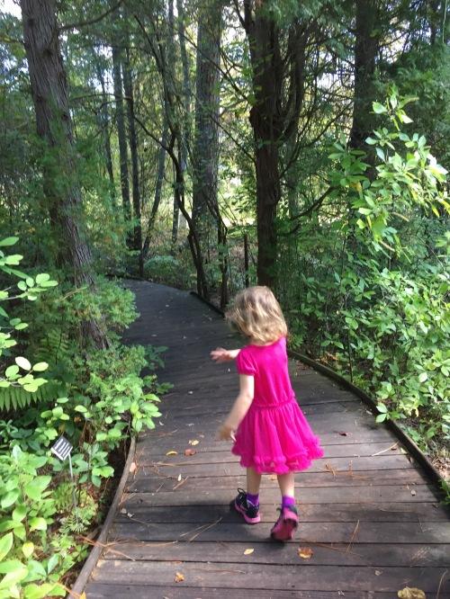 wooden slats path