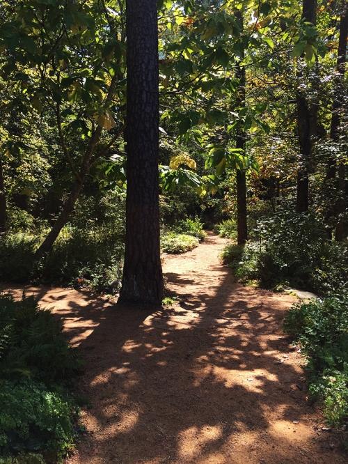path_less_followed